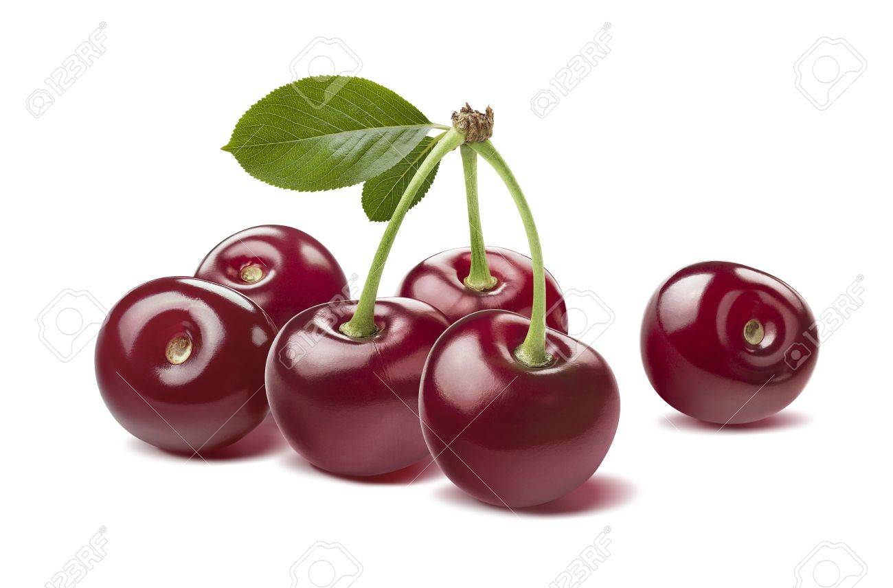 Many glossy wild cherries raw isolated on white background as package design element - 42564678