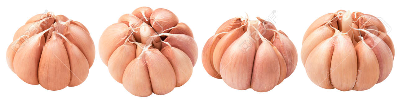 Fresh garlic heads set isolated on white - 168223496