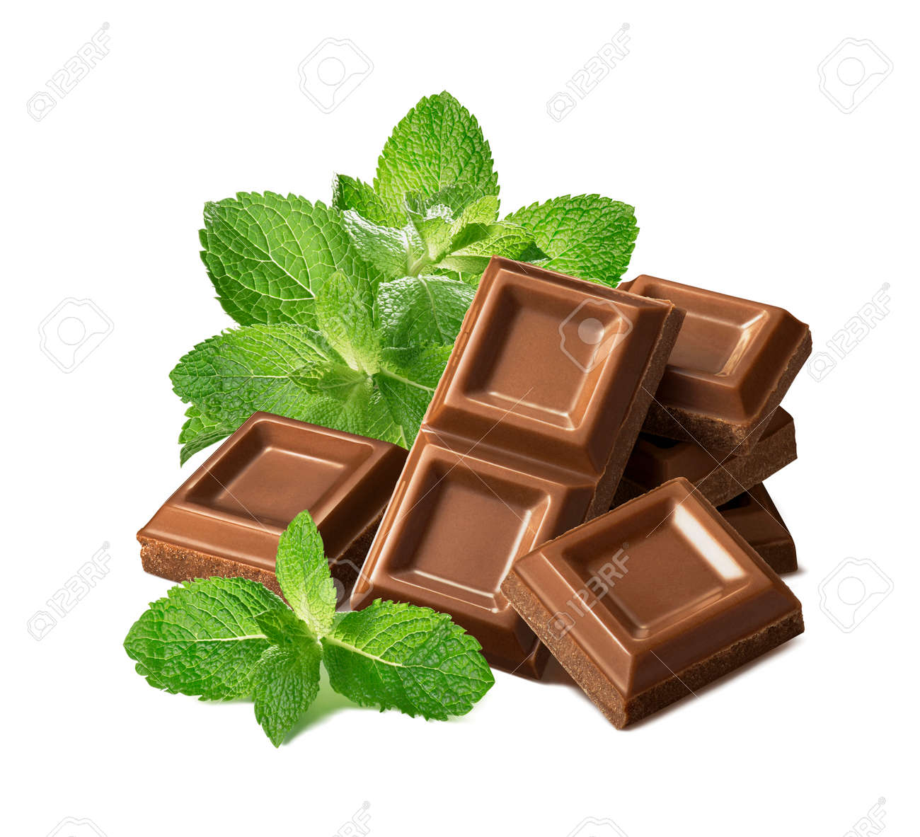 Fresh mint leaves and pile of chocolate pieces isolated on white background. Package design element - 173413979