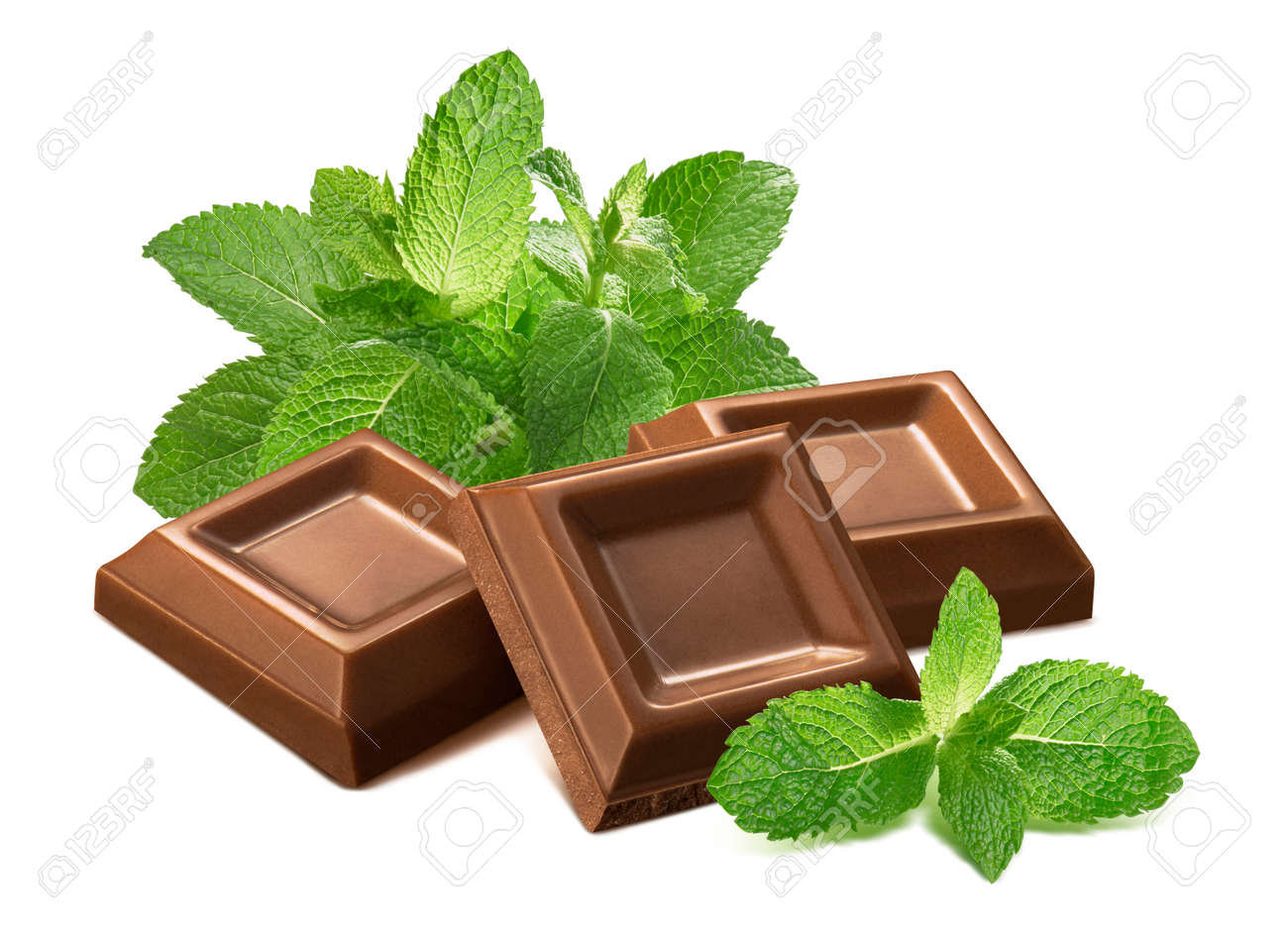 Fresh mint leaves and chocolate pieces isolated on white background. Package design element - 173413993