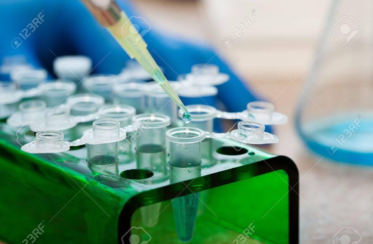 workplace modern laboratory for molecular biology test Stock Photo - 10995389