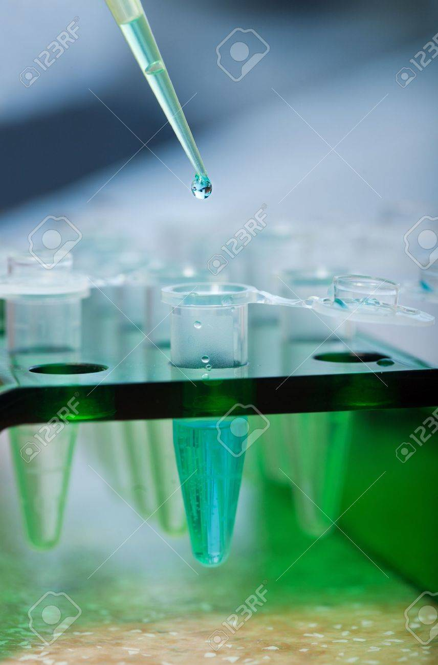 workplace modern laboratory for molecular biology test Stock Photo - 12539264