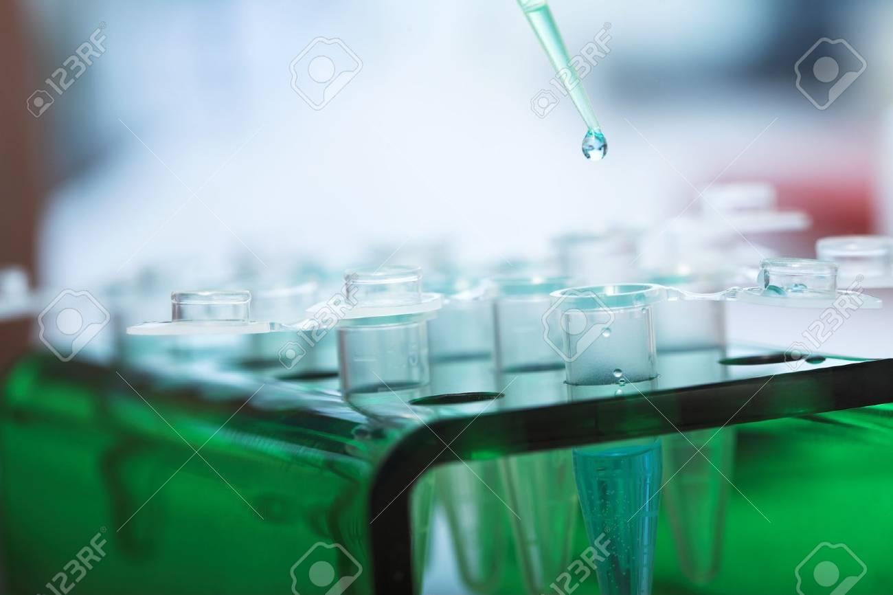 workplace modern laboratory for molecular biology test - 15607252