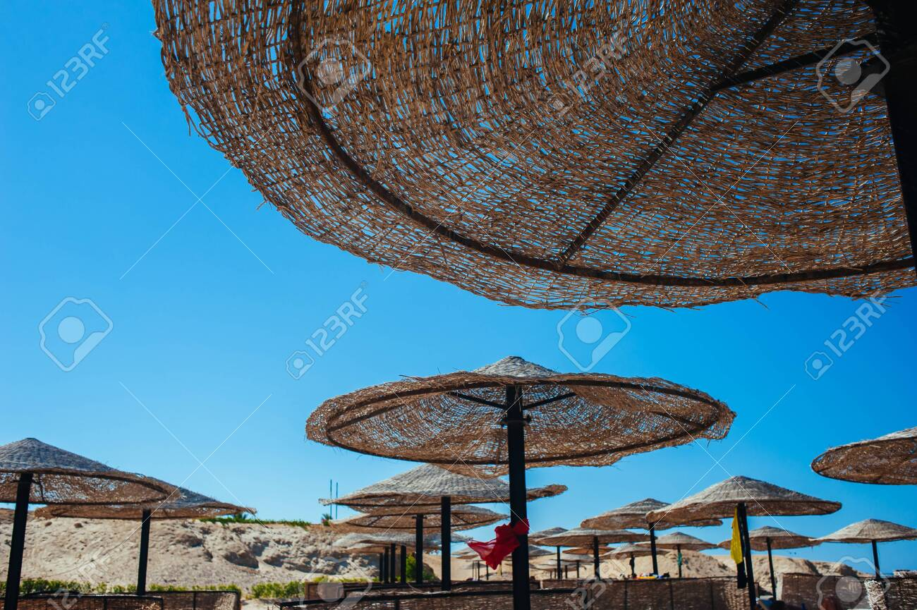 Empty beautiful clean beach with sunbeds and umbrellas, Egypt. Vacation concept. View of the beach with umbrellas and palm trees. - 150544349