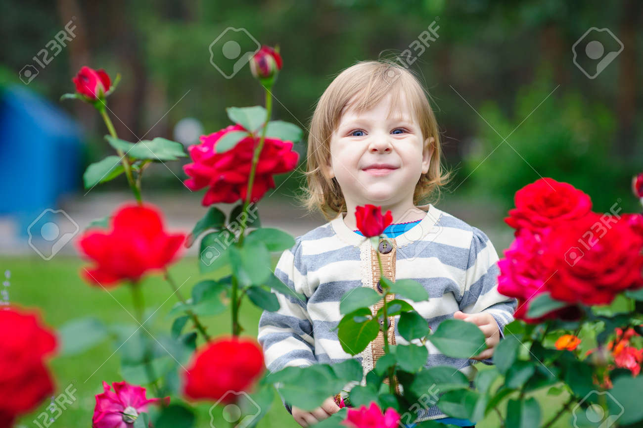 Cute little girl playing in sunny summer park. Toddler kid playing with a flowers. Kids play outdoors. Preschooler in school yard on warm day. - 168823495