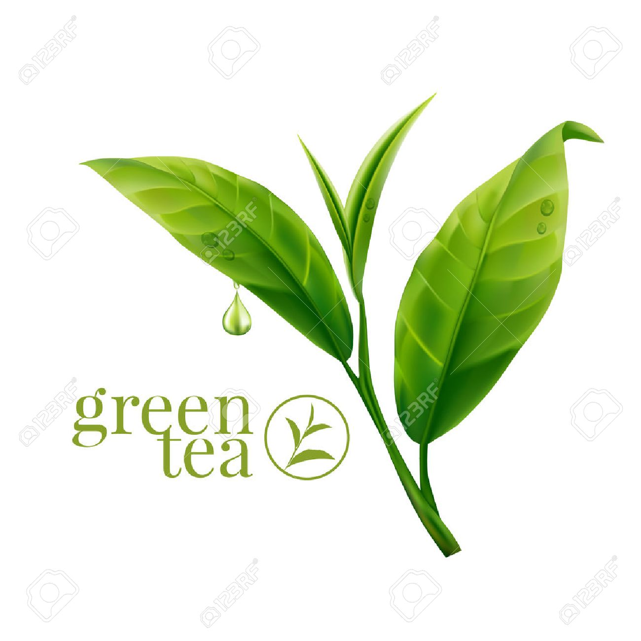 Green tea leaf - 60112908