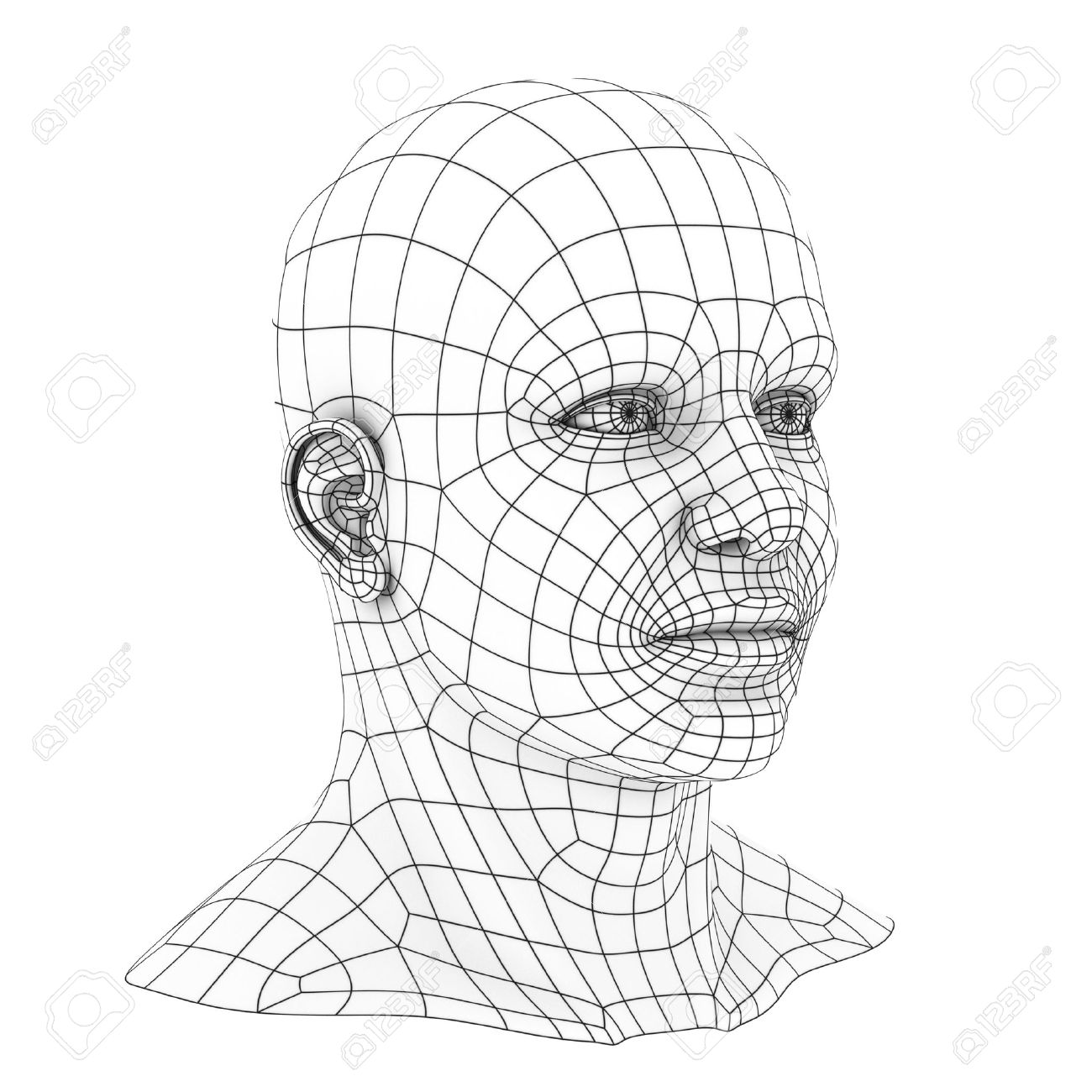 Human Head 3d Wireframe Stock Photo, Picture And Royalty Free Image ...
