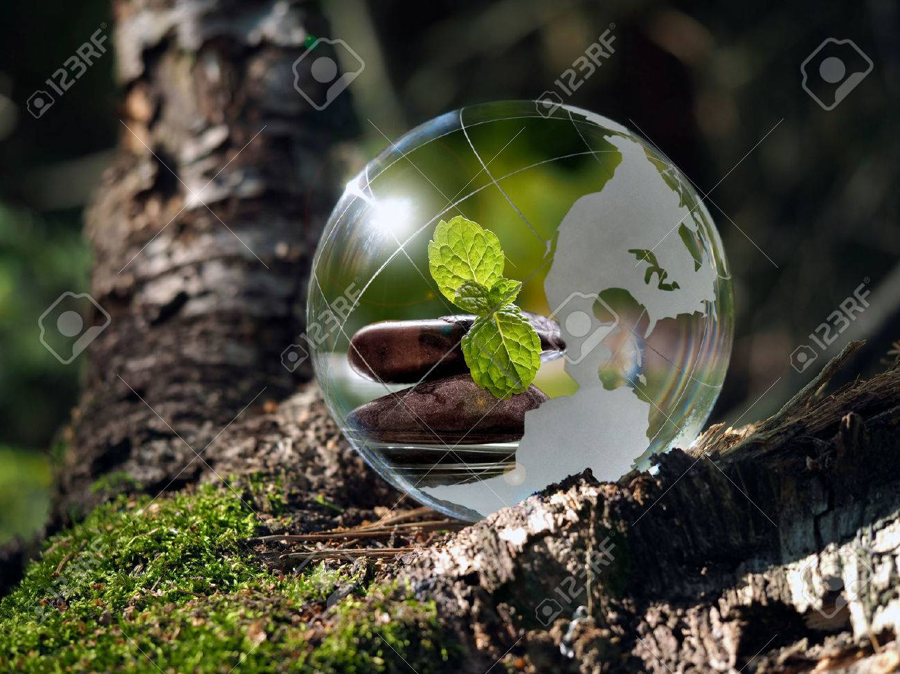 Transparent ball in the green forest. In the sphere reflected cairn, green mint leaves, water. Glass - a material, concepts and themes, zen, meditation, environment, ecology, peace, - 61252834
