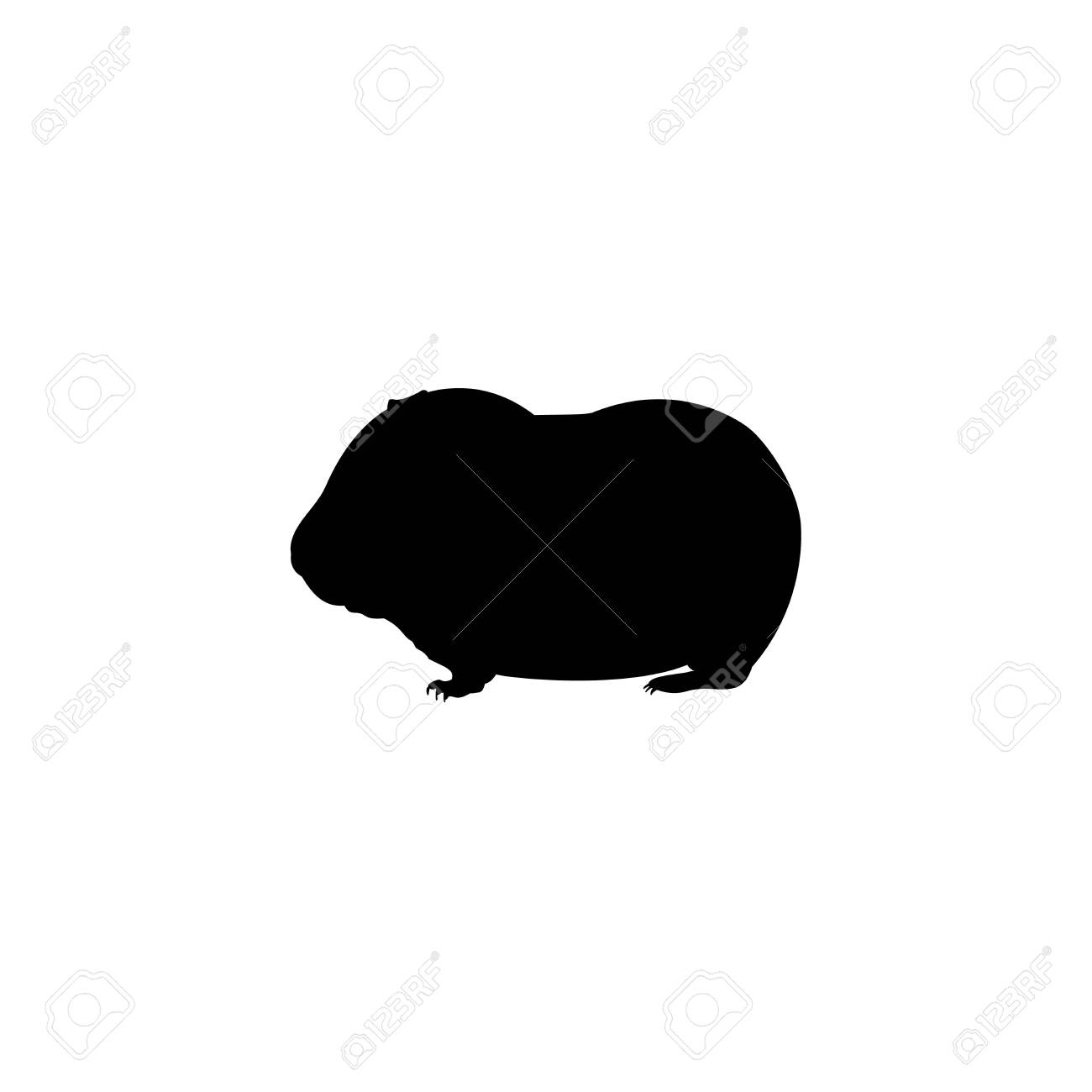 Silhouette young little Guinea pig. Cute young animal. Vector illustrator - 135591517