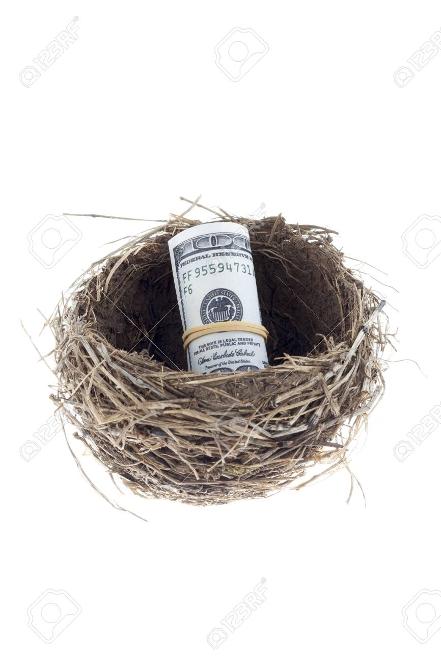 A close-up portrait of a birds nest with a US dollar inside on a white background Stock Photo - 15557670