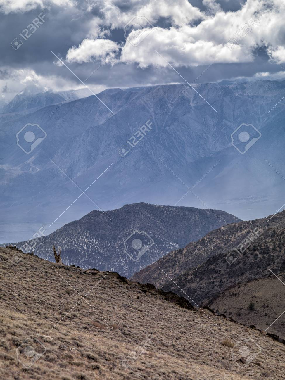 Distance of a view of valley with mountain range on background Stock Photo - 16982888
