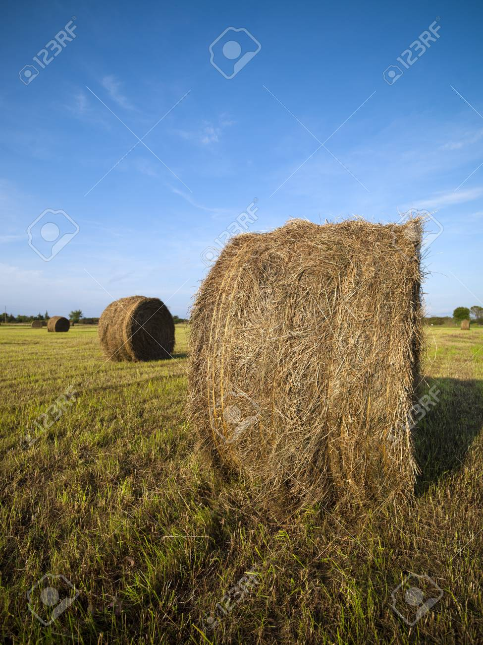View of a hay bale in field with sky in the background. Stock Photo - 16978300