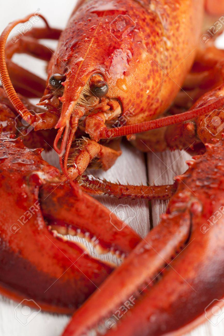 Macro image of whole red lobster on a wooden table Stock Photo - 17167536