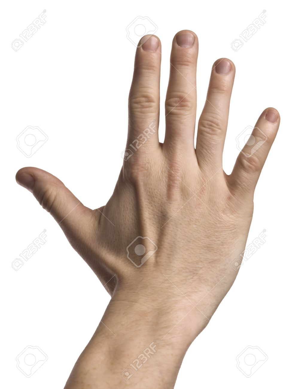 Close-up image of a hand with open palm against the white surface Stock Photo - 17251099