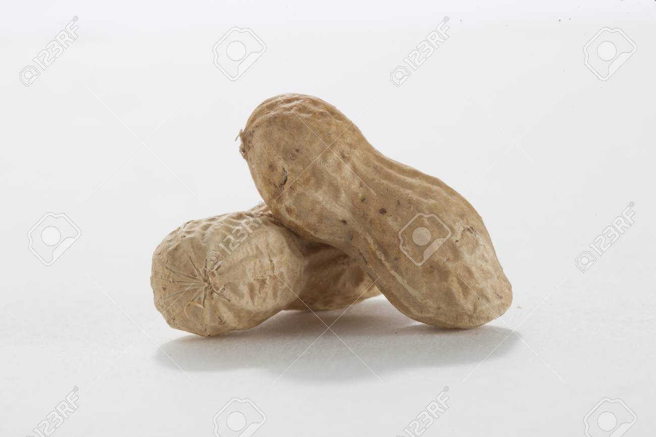 Image of two ground nuts lying on a white background Stock Photo - 17258283