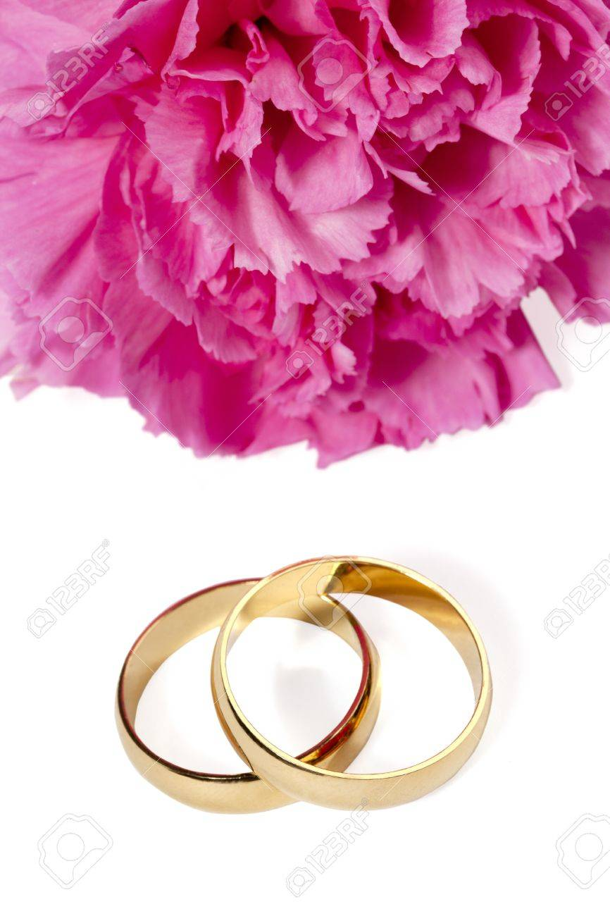 Close-up Shot Of Gold Wedding Rings And Pink Flower On White.. Stock ...
