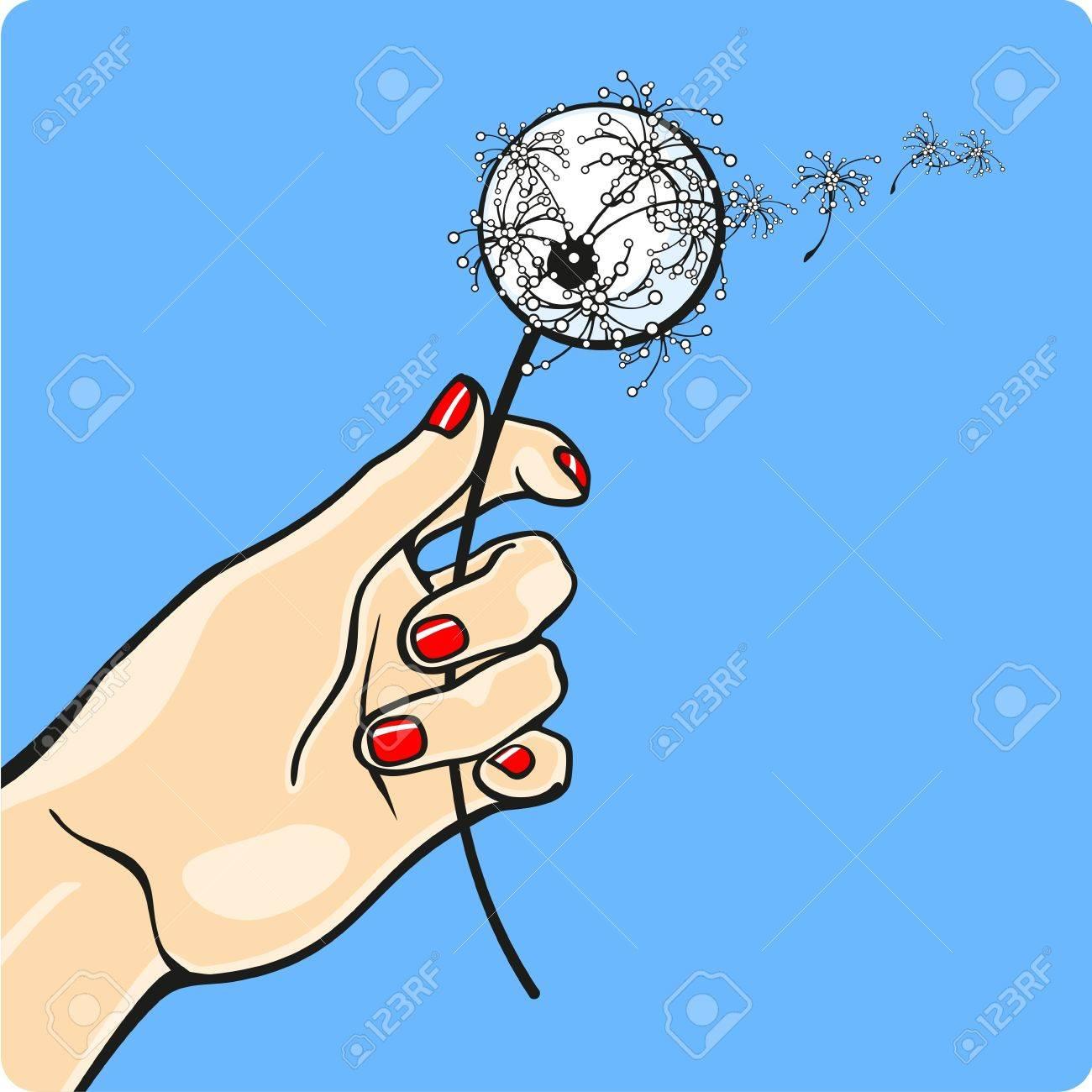 Female hand holding a dandelion Stock Vector - 13607775