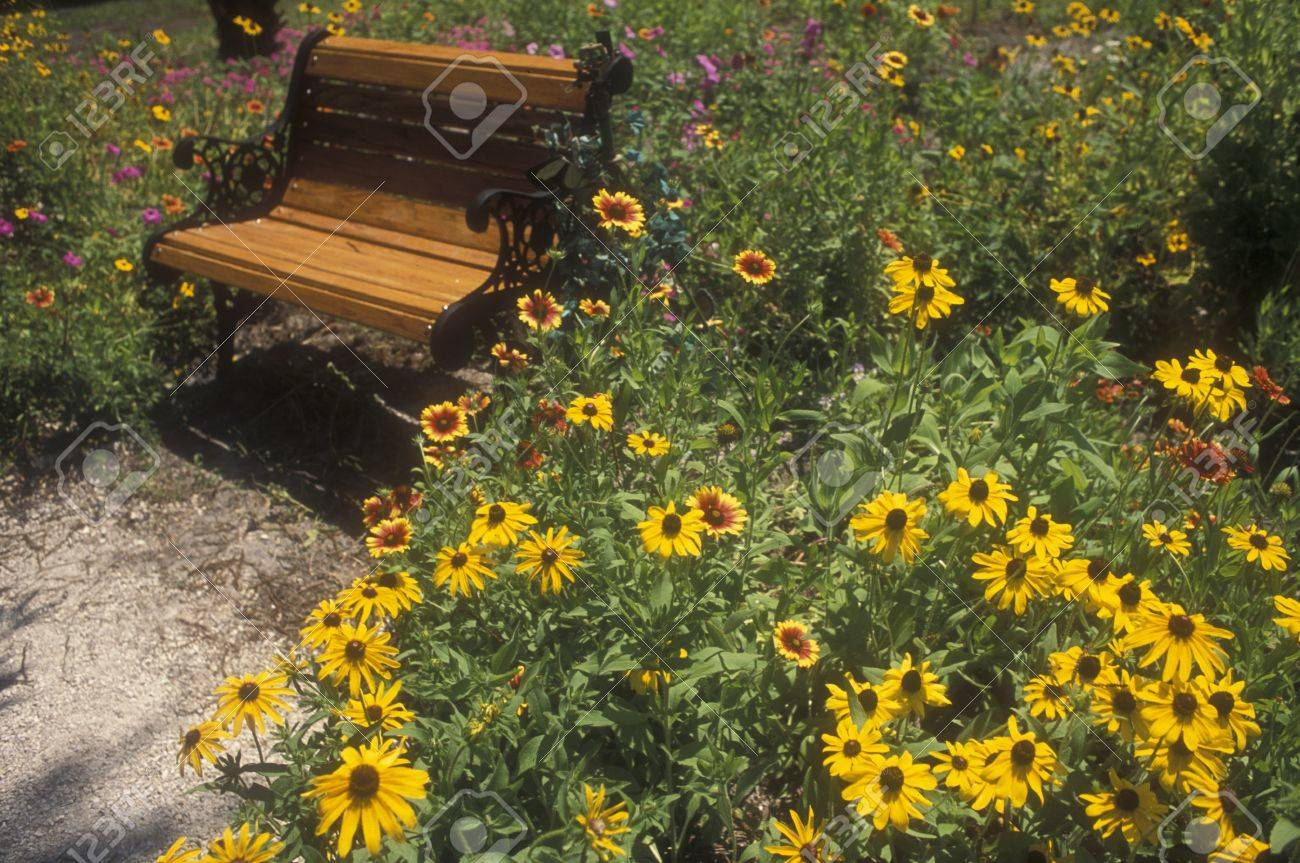Butterfly farm flower garden anchored by wooden bench. Stock Photo - 11410597