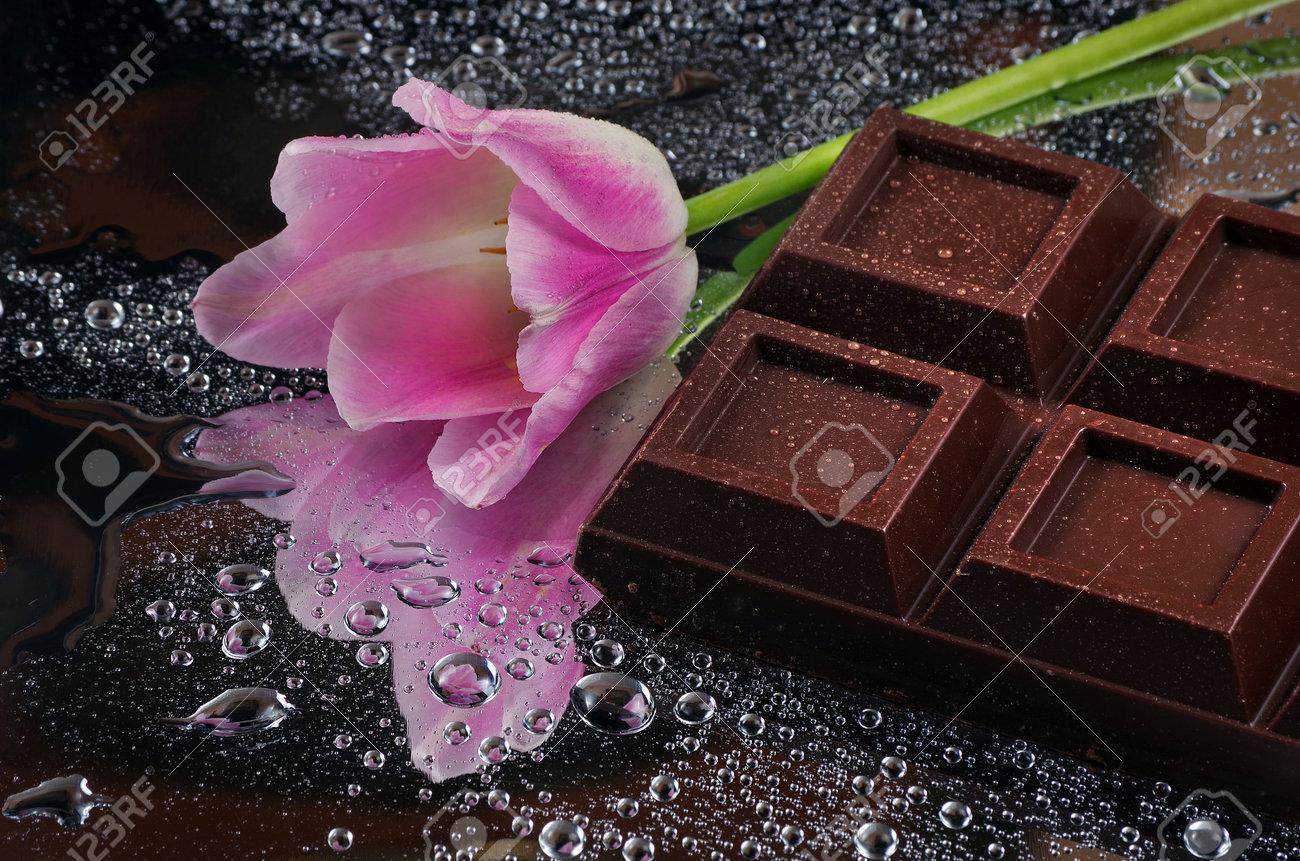 dark chocolate bar and pink tulip. - 169620158
