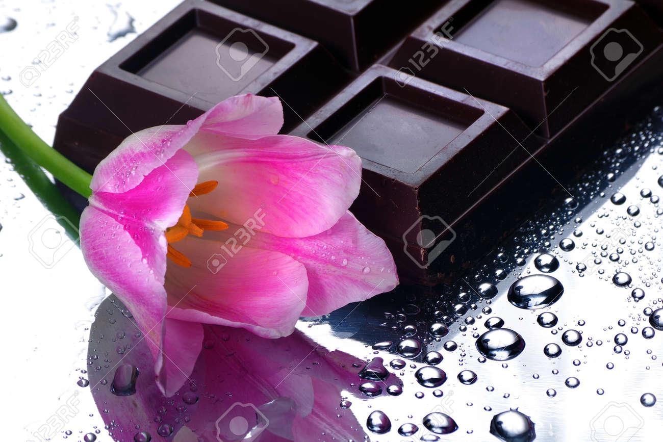 dark chocolate bar and pink tulip. - 169620173