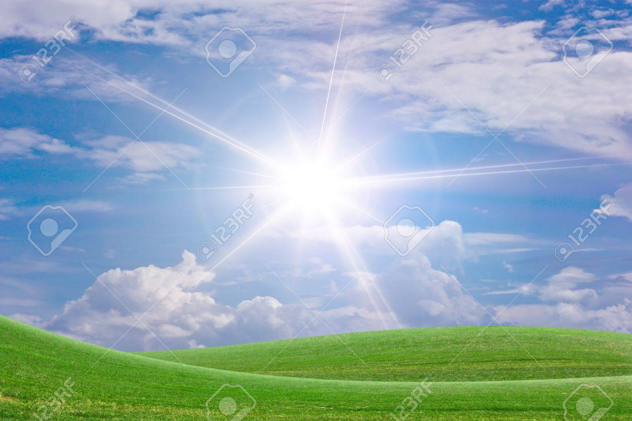 Sun and grass. Stock Photo - 10694854