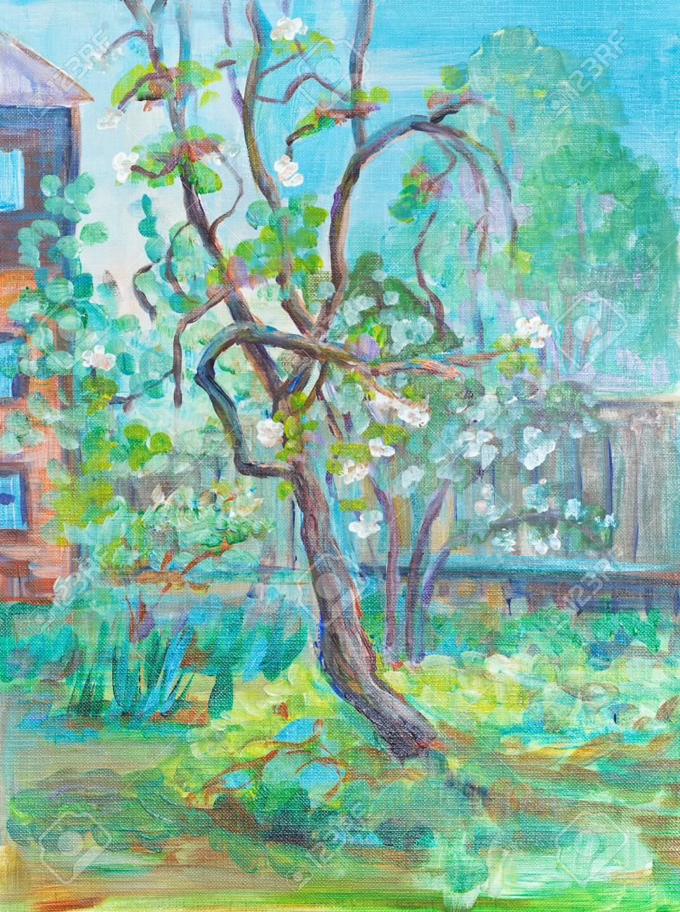 Antiguo Manzana-árbol Con Flores En La Primavera Fotos, Retratos ...