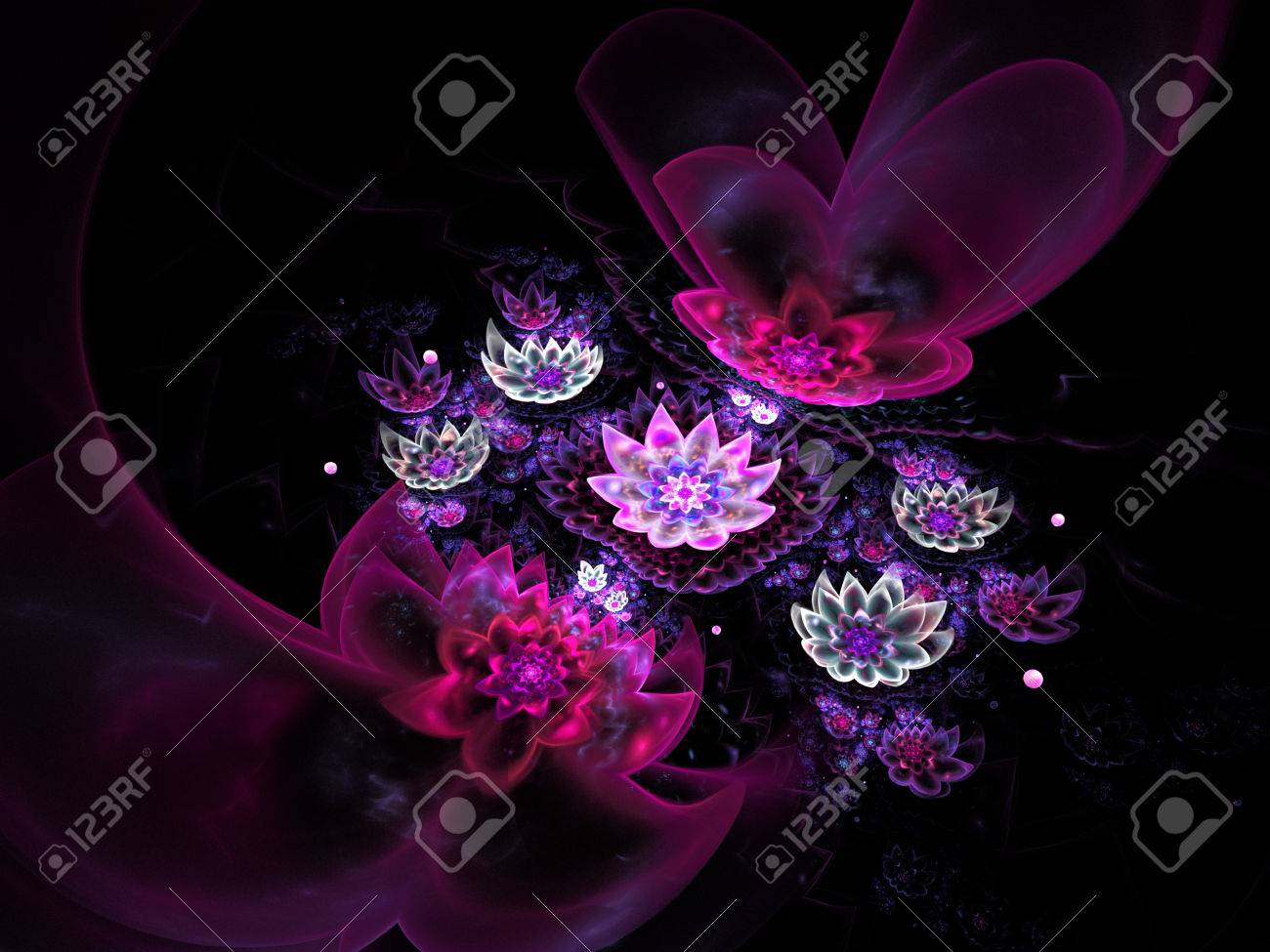 Abstract Beautiful Lotus Flowers On Black Background Fantasy
