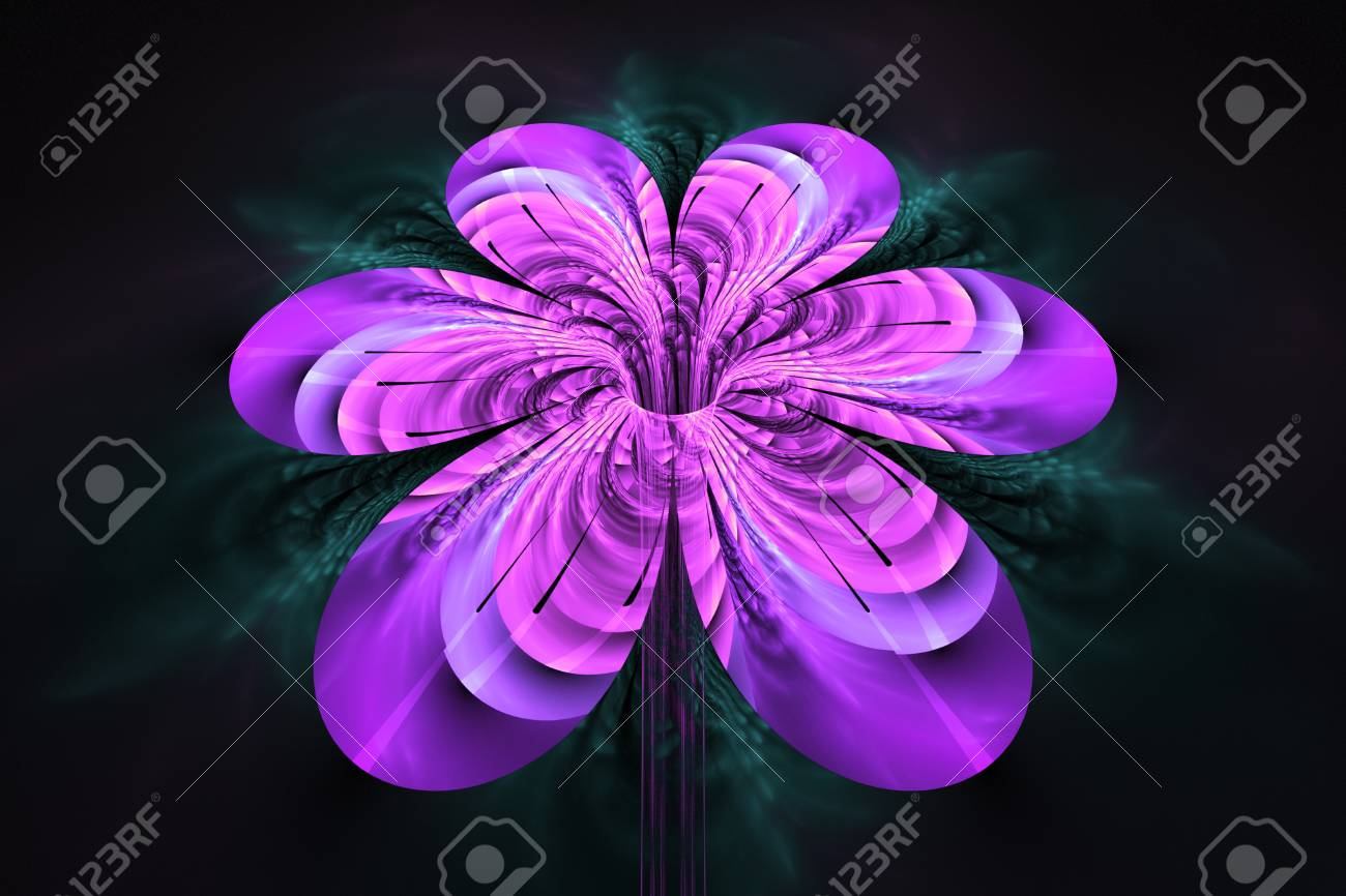 Abstract Colorful Flower On Black Background Fantasy Purple Pink And Dark Green Fractal Design
