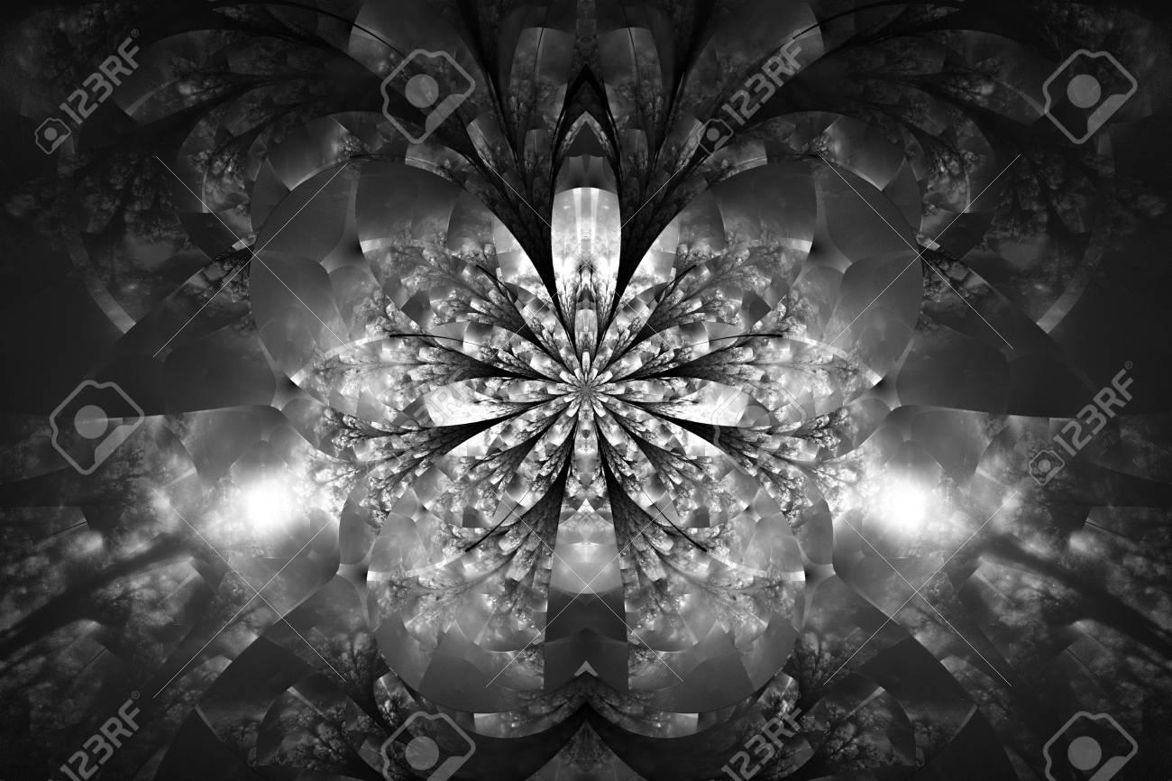黒い背景に抽象的なモノクロの花 黒と白の色で複雑な対称パターン ファンタジー フラクタル デザイン ポスター 壁紙や T シャツ デジタル アート 3 D レンダリング の写真素材 画像素材 Image