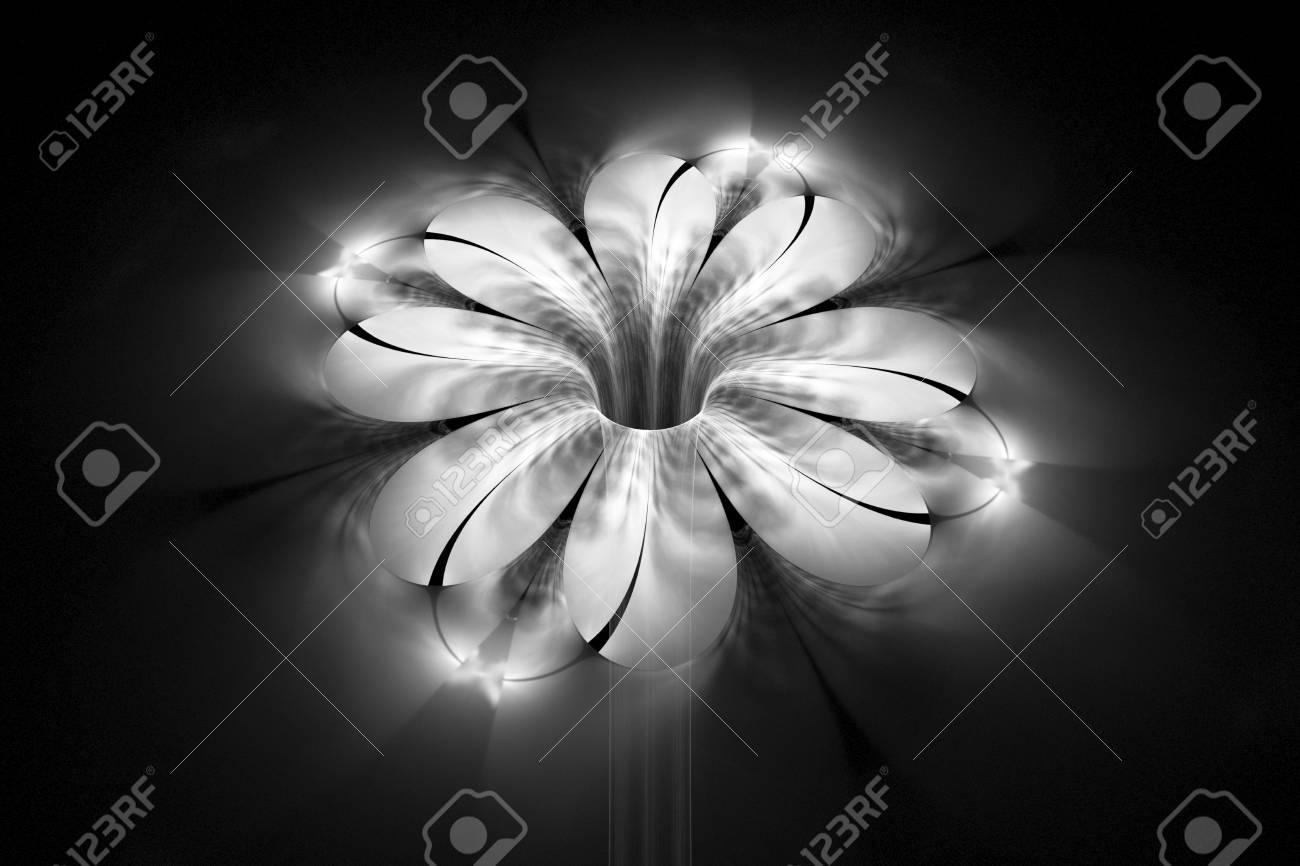 黒い背景に抽象的な熱烈なモノクロの花 ファンタジー黒と白のフラクタル デザイン ポスター 壁紙 ポストカードや T シャツ デジタル アート 3 D レンダリング の写真素材 画像素材 Image