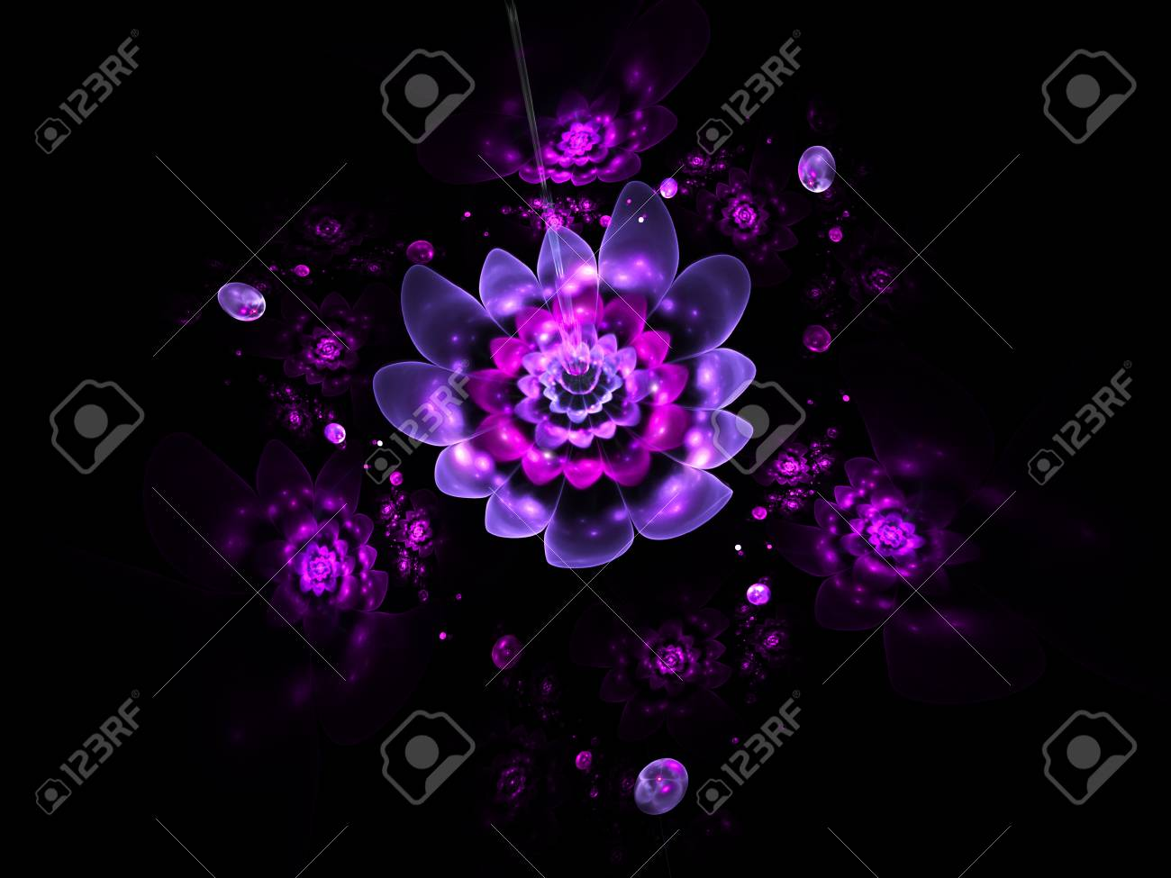 Abstract Colorful Pink And Purple Flowers On Black Background