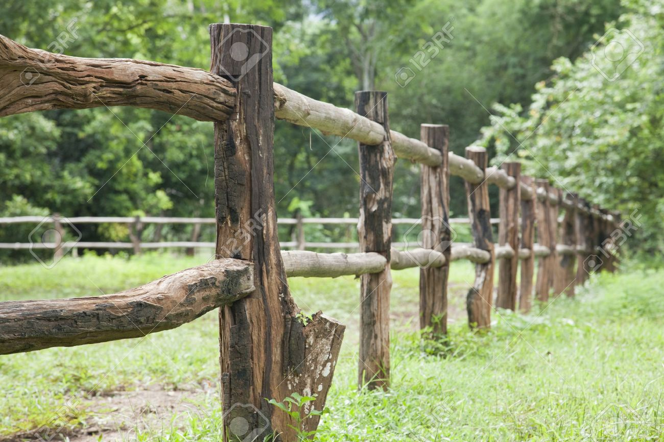 Superbe Close Up, Old Wooden Fence On Green Meadow Stock Photo   14468936