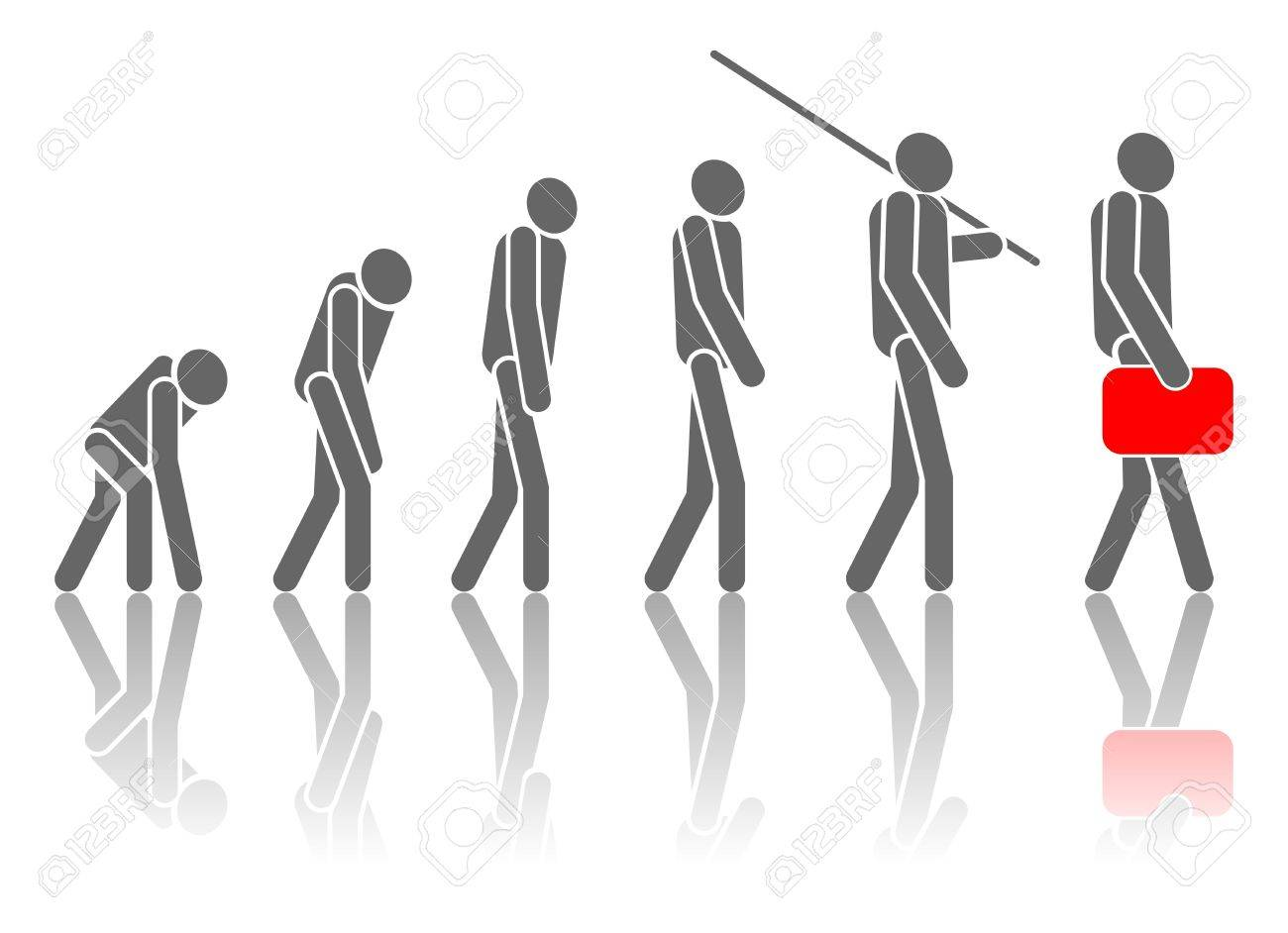 signage  of the process of evolution. Stock Photo - 17619858