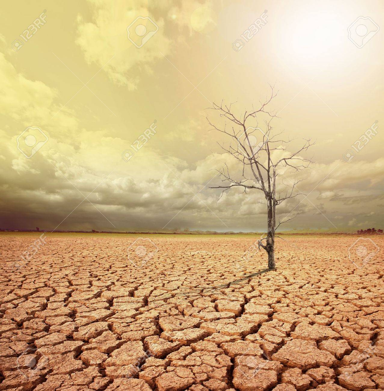 concept image of global warming Stock Photo - 19370561