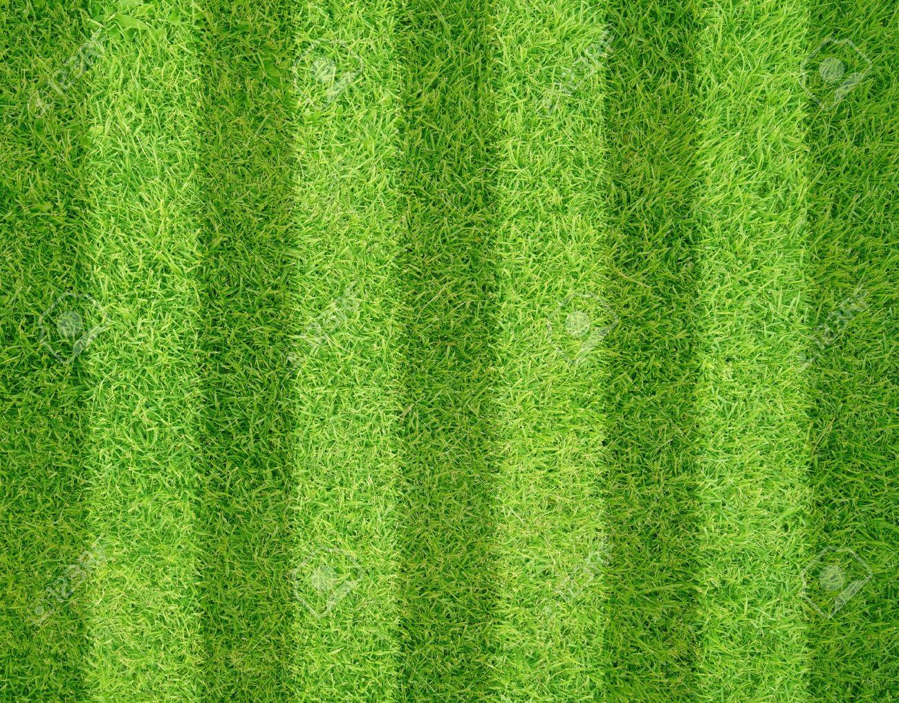 green grass football field picsart background green grass of football soccer field background stock photo 29137373 green grass of soccer field background