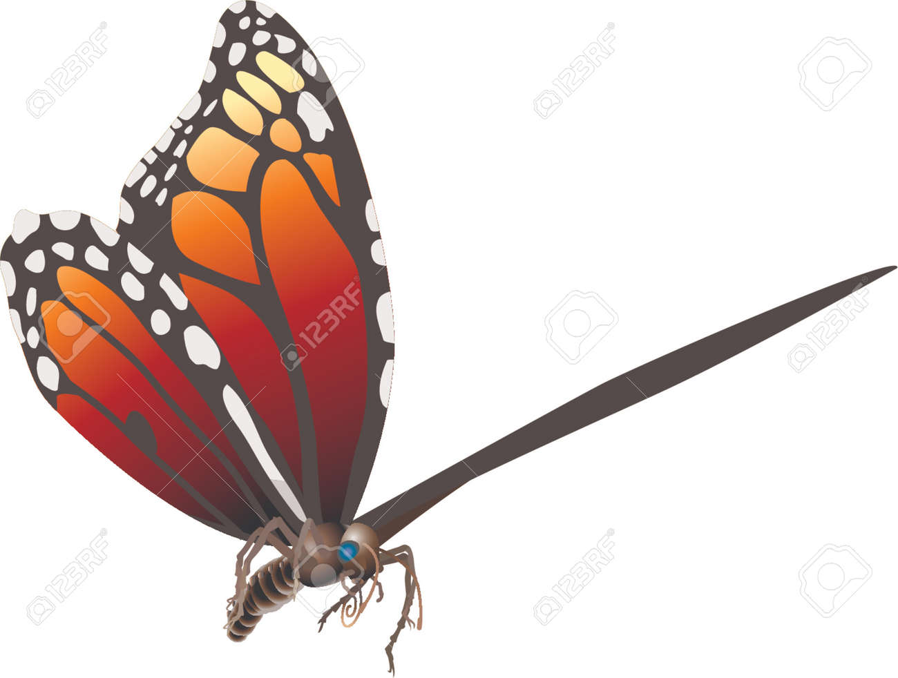 butterfly Stock Vector - 663393