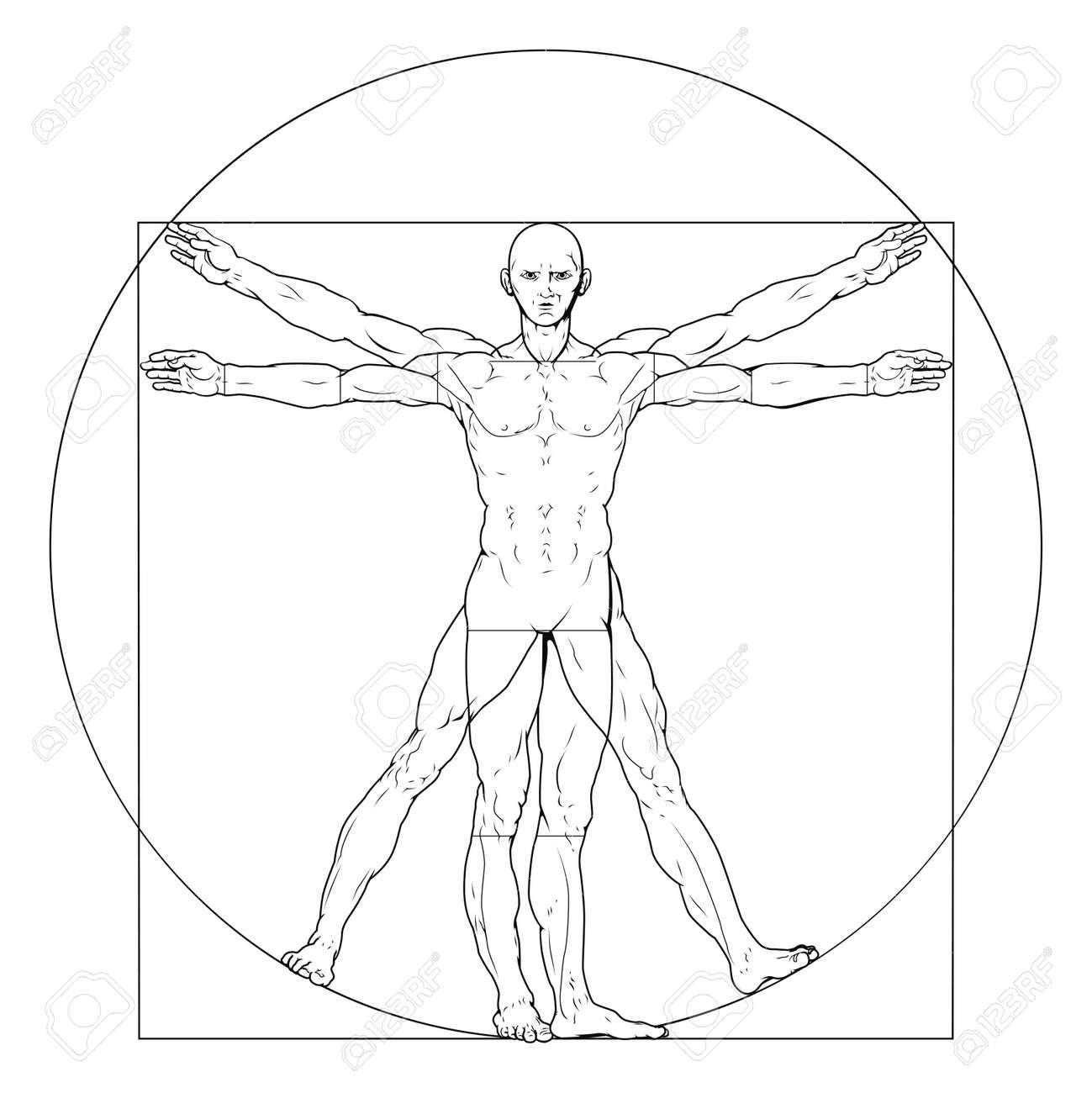 Illustration Based On Leonardo Da Vincis Classic Vitruvian Man