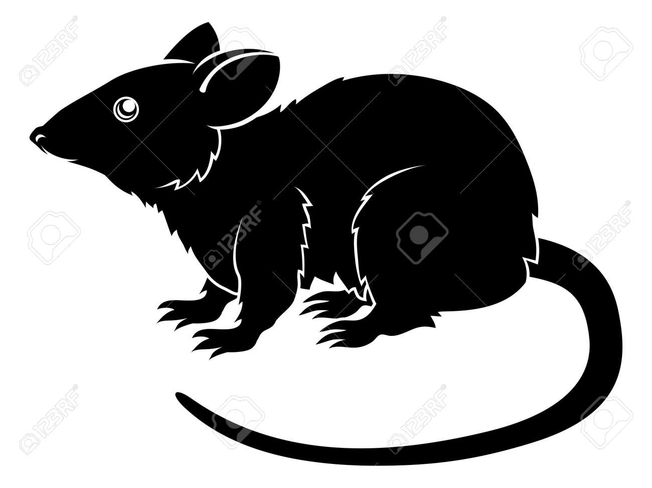 An illustration of a stylised rat perhaps a rat tattoo Stock Vector - 20018562