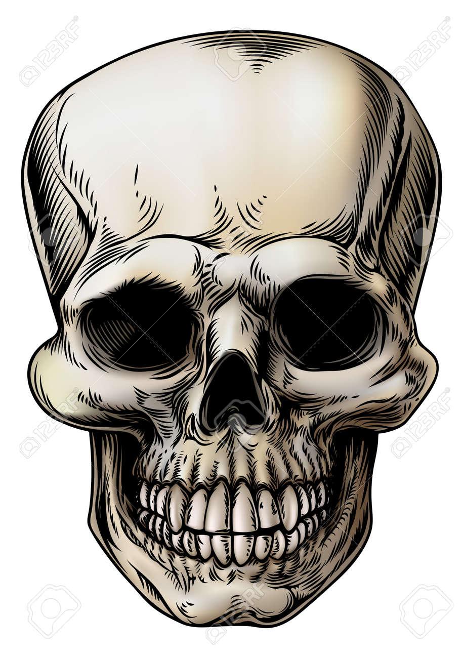 dessin tete de mort une moissonneuse squelette tte illustration humaine de crne ou sombre dans