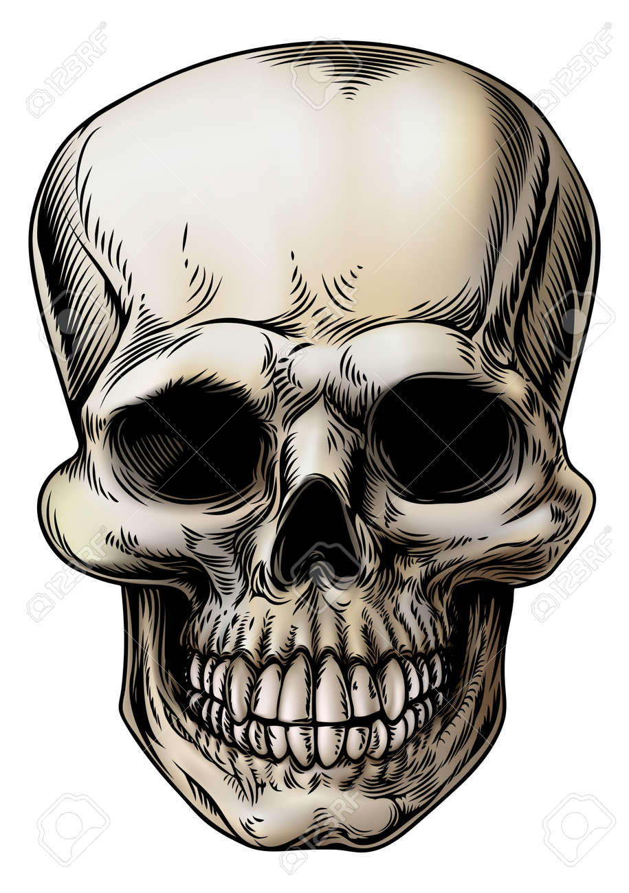 a human skull or grim reaper skeleton head illustration in a