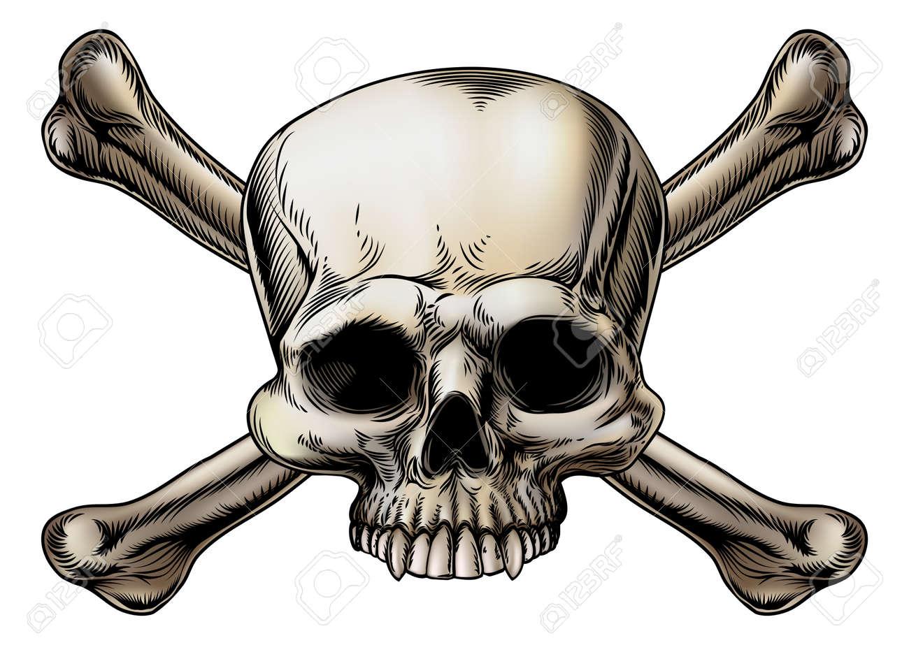 Groß Knochen Des Schädels Fotos - Menschliche Anatomie Bilder ...