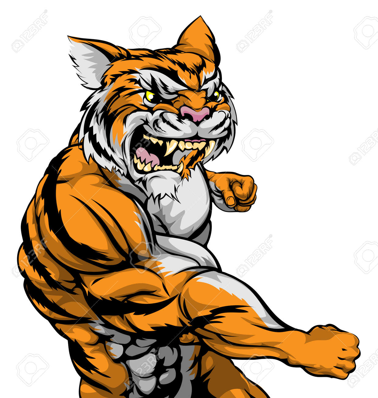 a tough muscular tiger character sports mascot attacking with rh 123rf com Tiger Clip Art Black and White Tiger Mascot Clip Art
