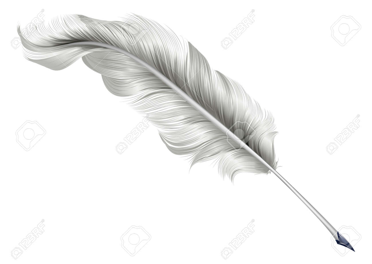 Line Drawing Of Quill : Best drawings images art and