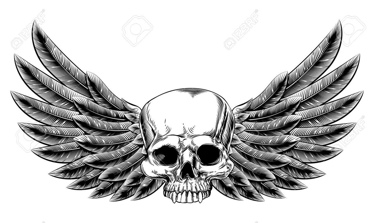 Original Illustration Of Vintage Woodcut Style Skull With Eagle