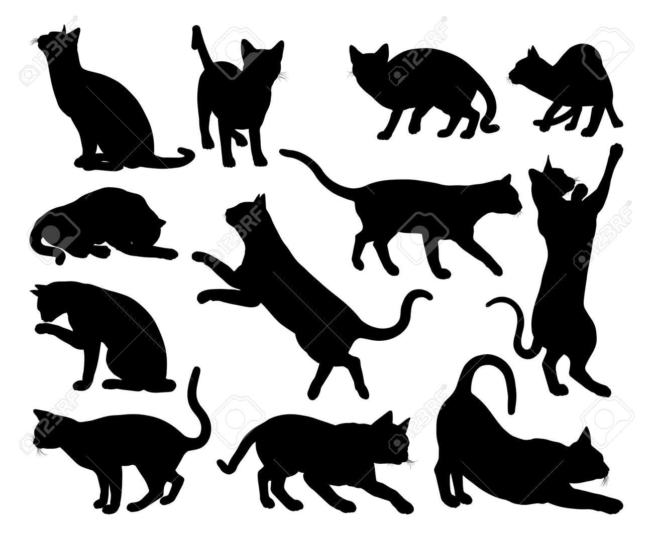 A cat silhouettes pet animals graphics set - 144728226