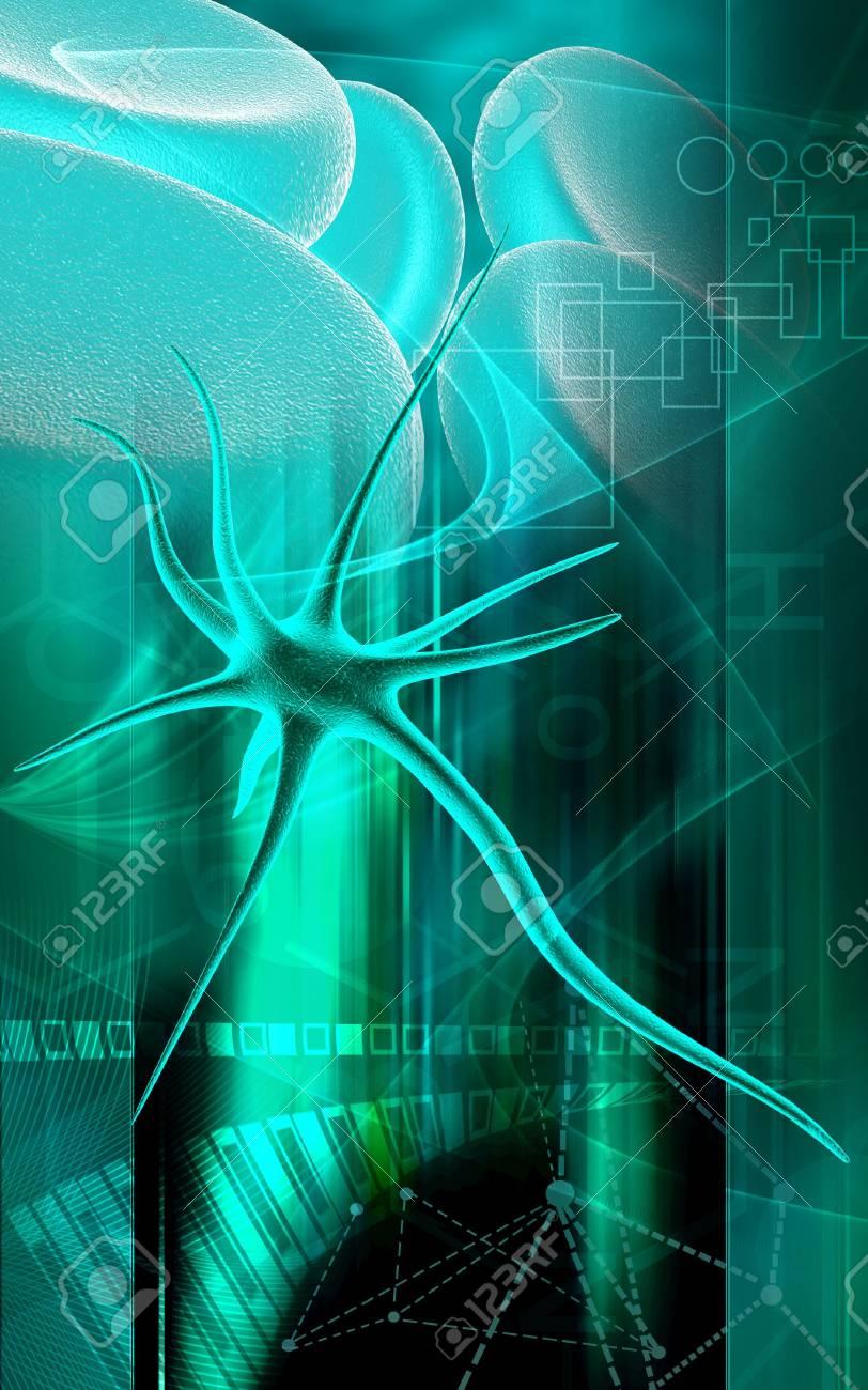 Digital illustration of neuron in colour background Stock Illustration - 5203067