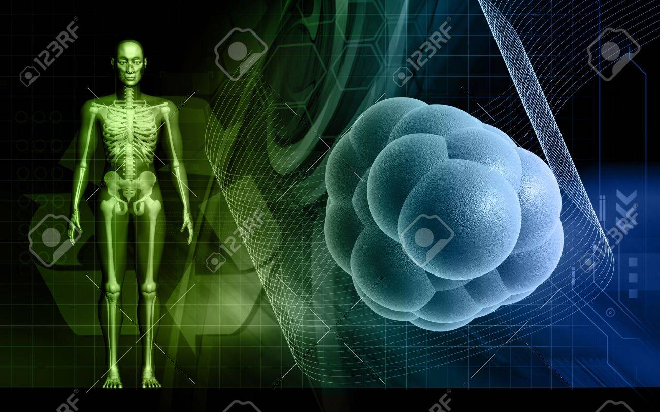 Background image body - Digital Illustration Of Human Body And Stem Cell In Colour Background Stock Illustration 5357214