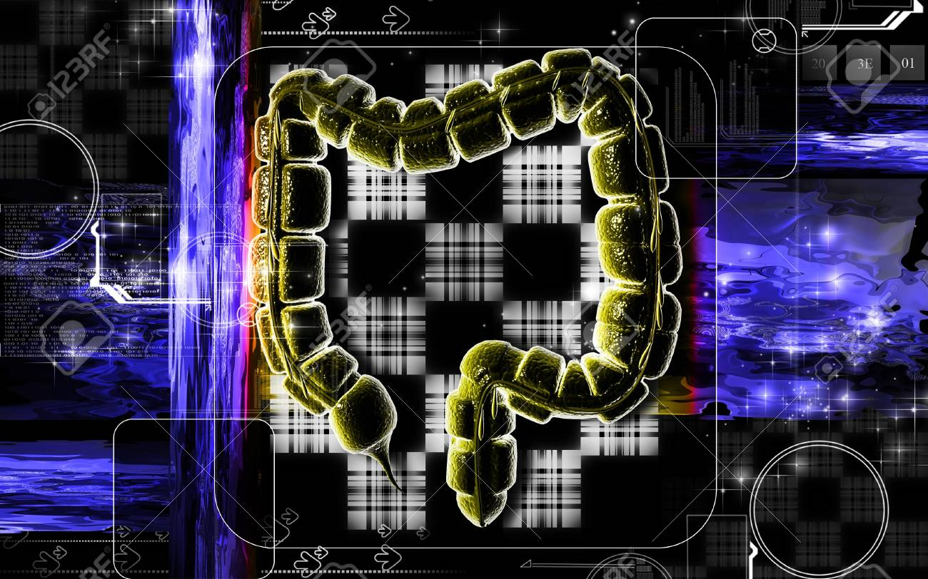 Digital illustration of large intestine in colour background Stock Photo - 7203292