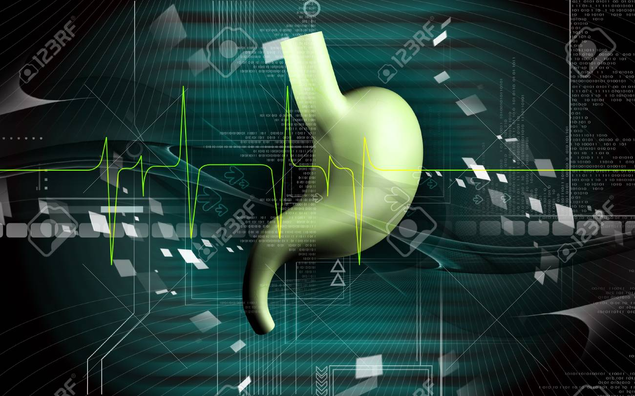 Digital illustration of  stomach  in colour  background Stock Illustration - 8017847