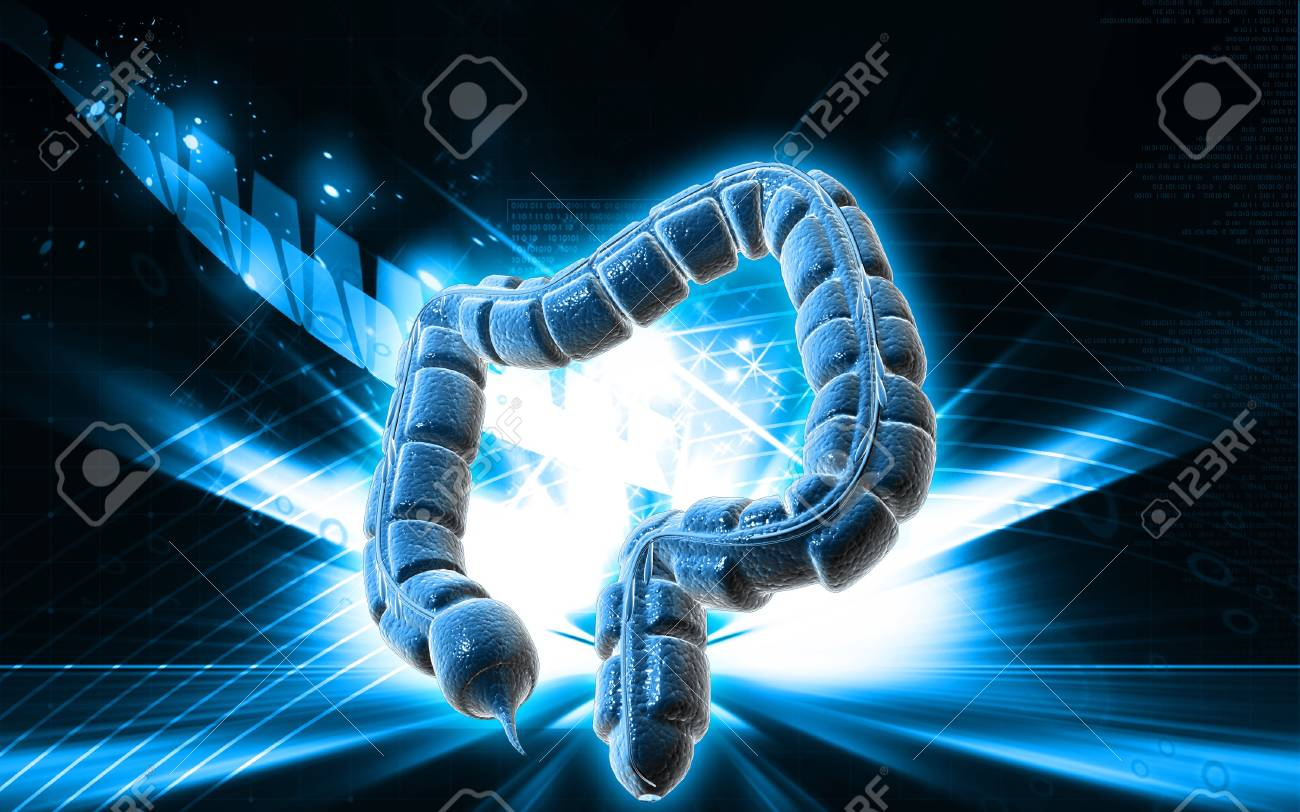 Digital illustration of large intestine in colour background Stock Illustration - 9665458